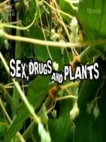 Sex, Drugs And Plants